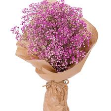 핑크안개flower