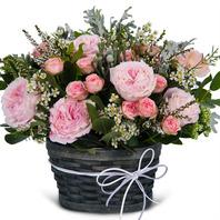 줄리엣핑크(자나미니) 꽃바구니k5