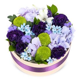 꽃케익k9
