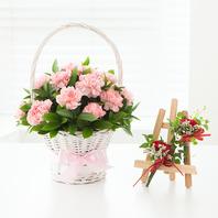핑크카네이션바구니k1(코사지욥션선택)