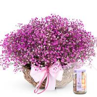 핑크안개바구니(사탕포함)