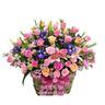 꽃 종합선물세트