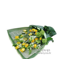 시트란 flower