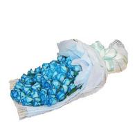 파란장미 속으로 빠져봐!