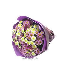 국화꽃 향기